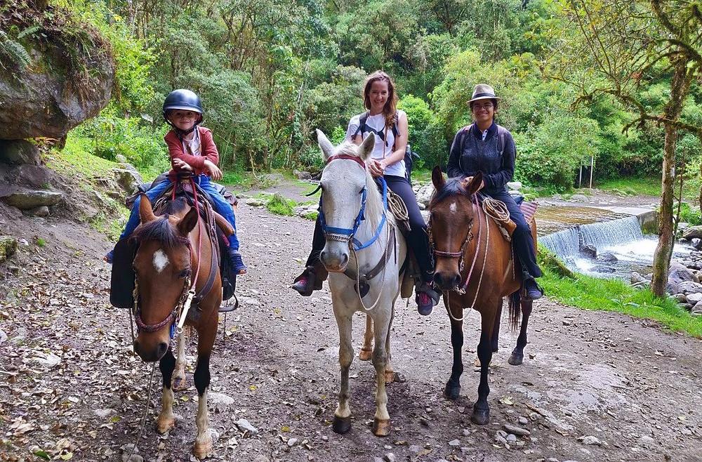 Randonnée à cheval à Valle de Cocora