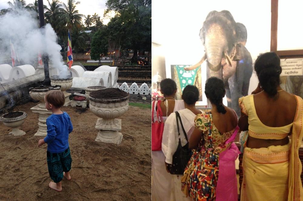 Encens et éléphant empaillé Temple de la dent Kandy Sri Lanka