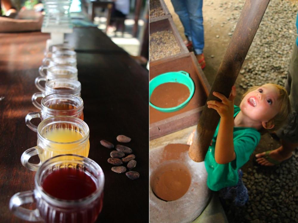 Kopi Luwak plantation de café Ubud