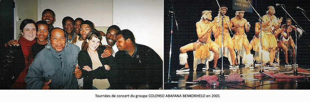 concerts zulu