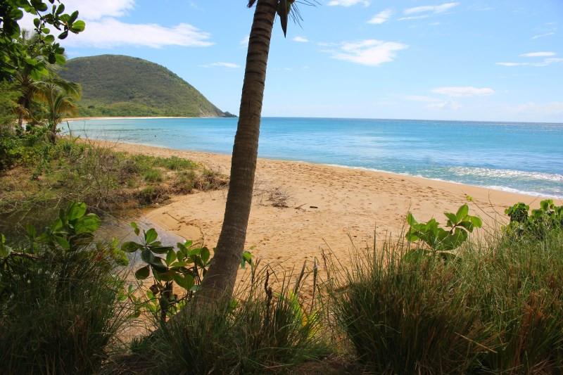 Basse Terre plage de Deshaies