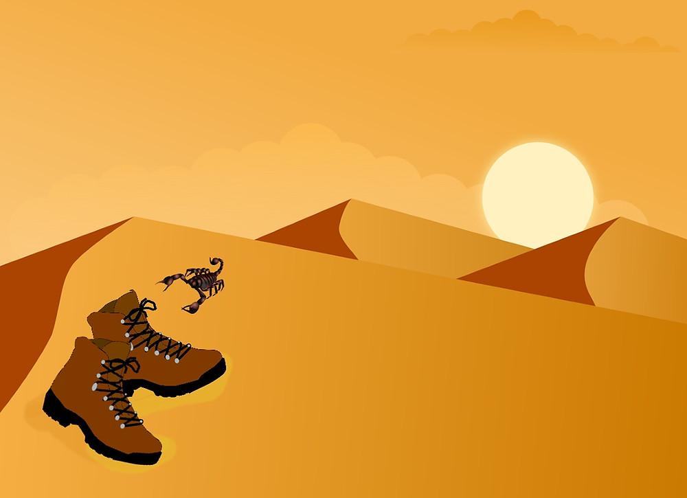 scorpions en voyage