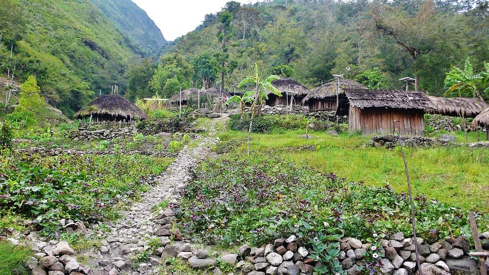 Vallée de Baliem papouasie voyage