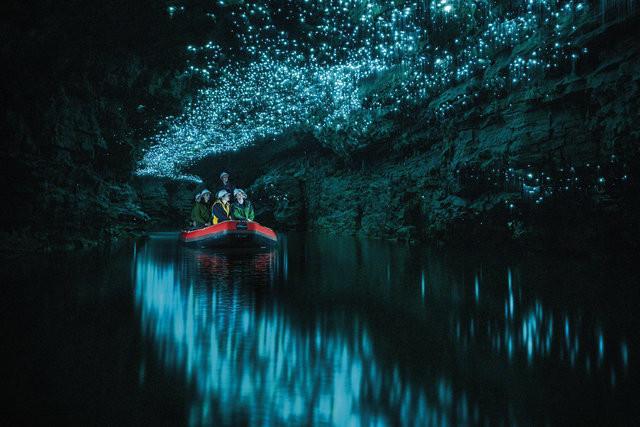 Spellbound Glow-Worm Cave Tour