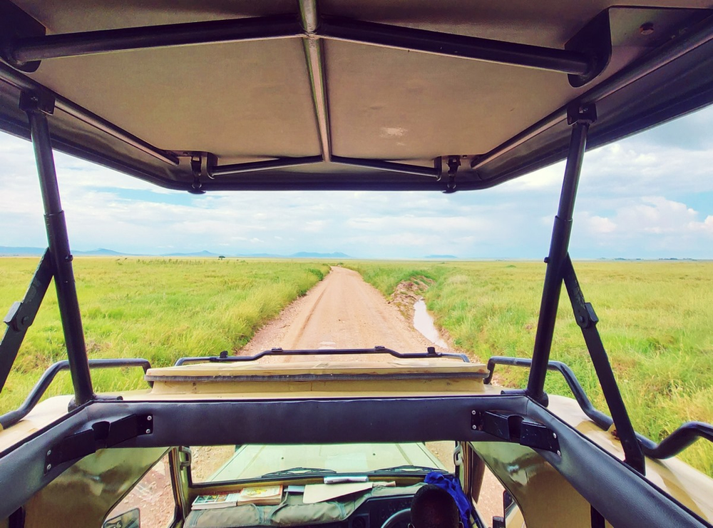 4x4 safari parc serengeti