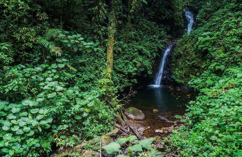 Cascade de San Luis monteverde