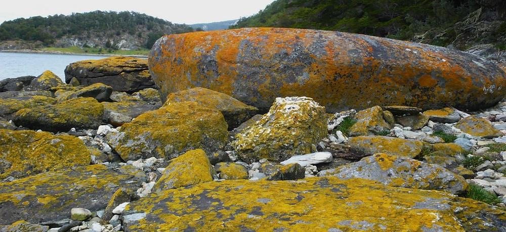 Paysage Ushuaia