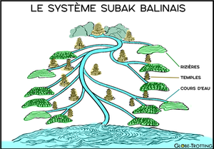 Subak Bali schéma système