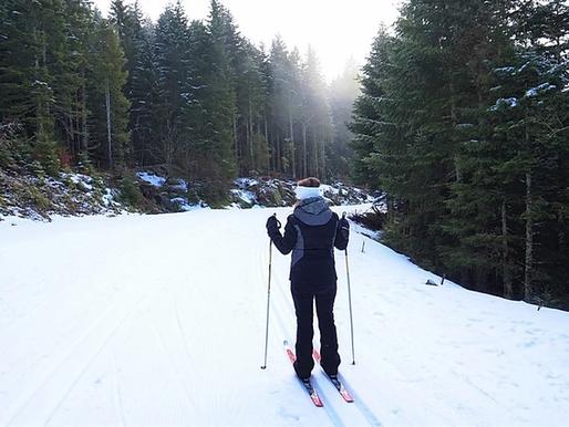 le Massif des Vosges en hiver