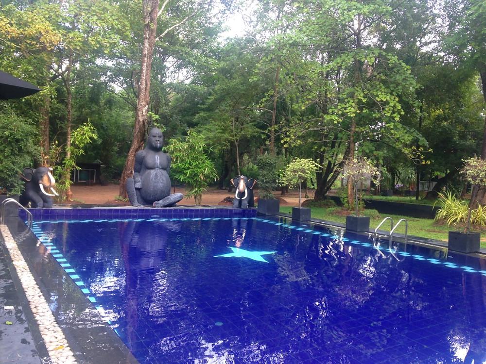 hotel sigiriya piscine