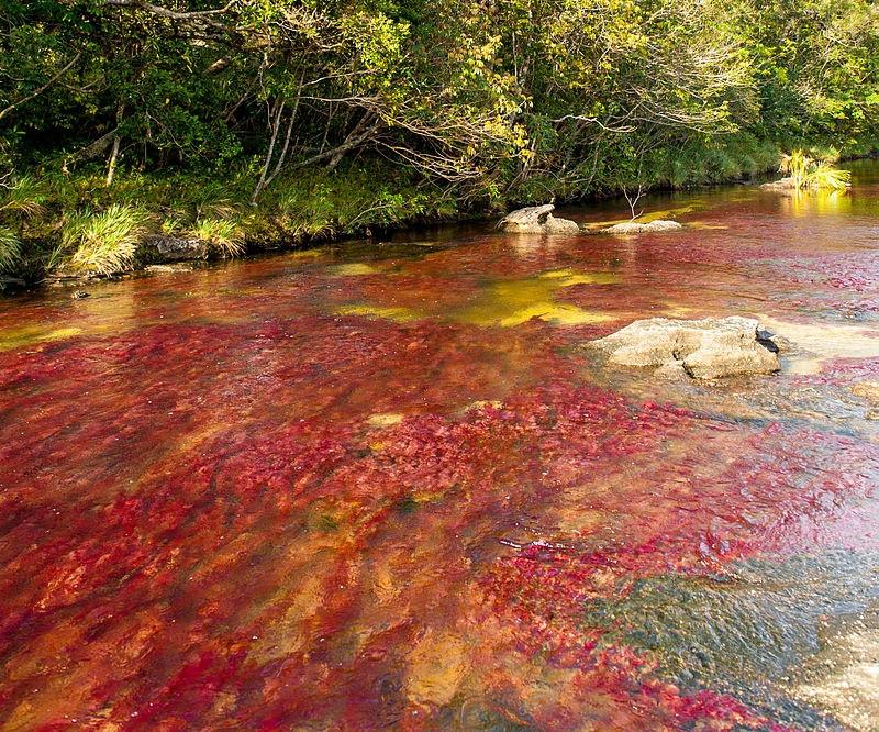 plus eau paysage colombie
