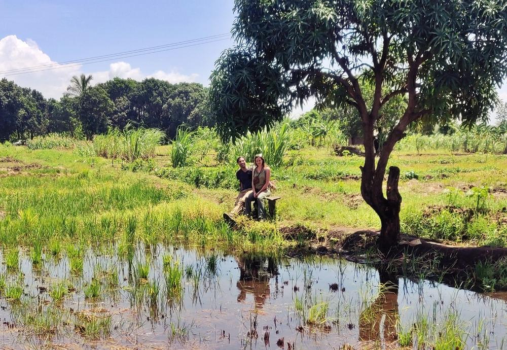 rizières de Mto Wa Mbu