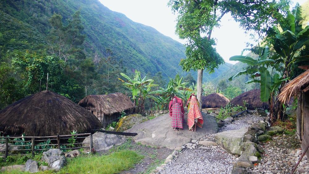 vallée de baliem Papouasie sans guide