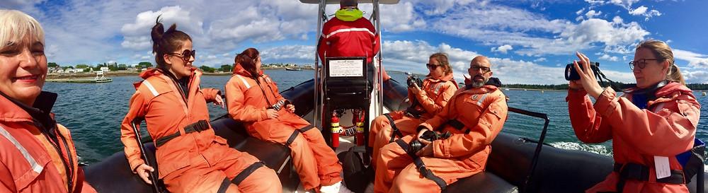 Observation des baleines au départ de St Andrews