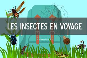 insectes en voyage
