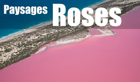 Paysages Roses du Monde