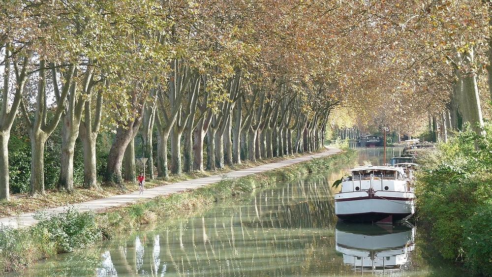 canal du midi royal en Languedoc