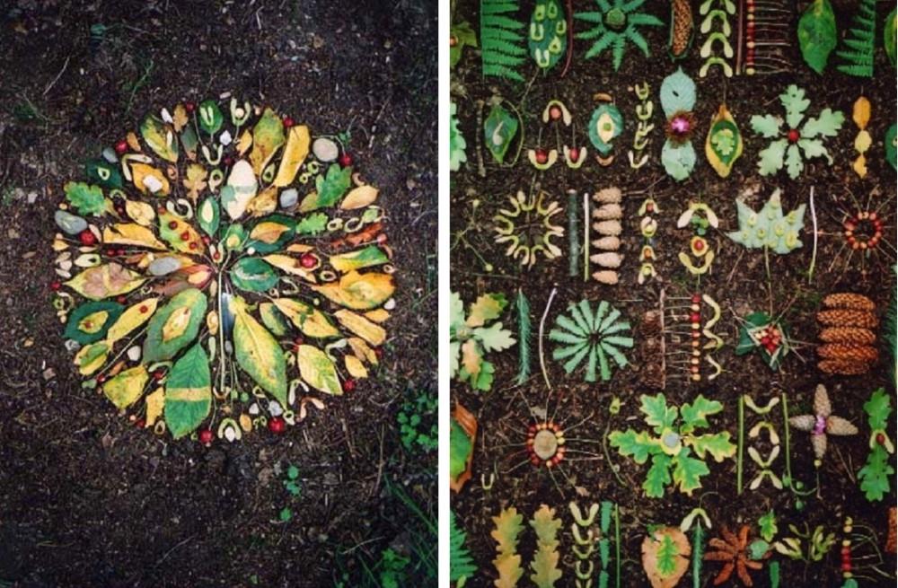 Tim Pugh feuilles d'automne rangées