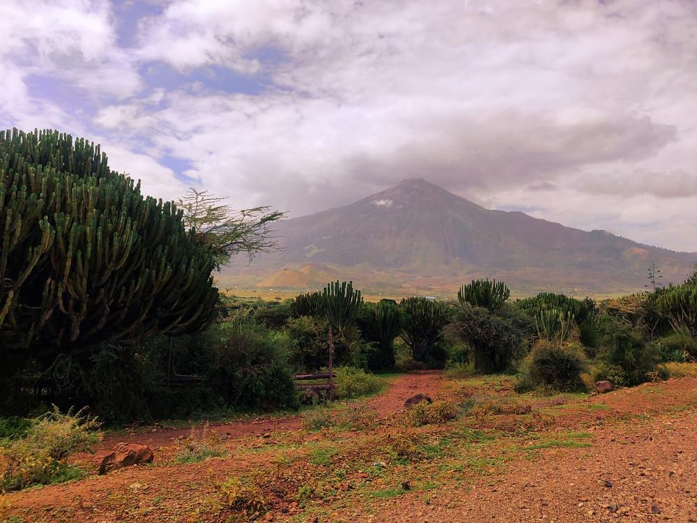 Kilimandjaro lodge maasai