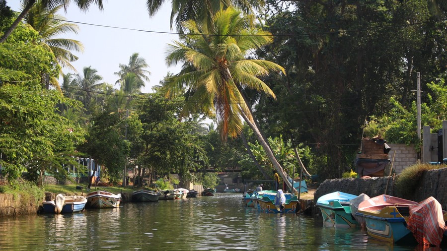 Negombo Dutch Canal