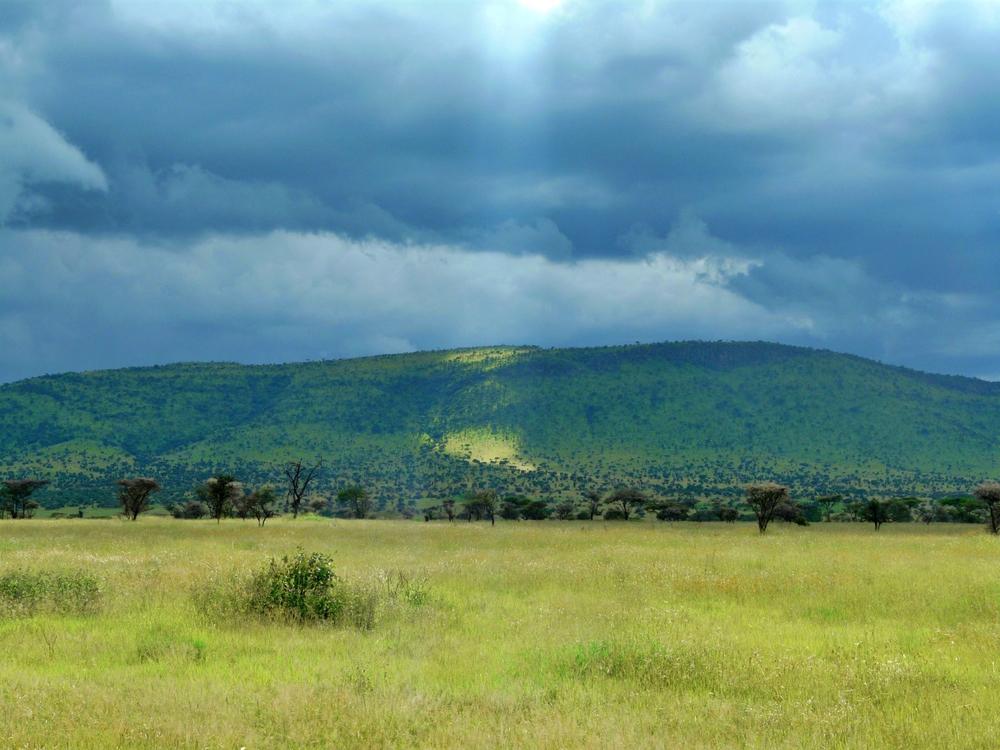 Parc du Serengeti Paysages nuages