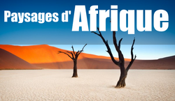 PAYSAGES AFRIQUE
