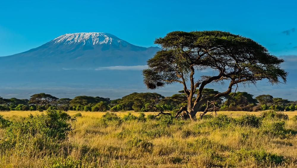 Top des Randonnées et Trek Afrique