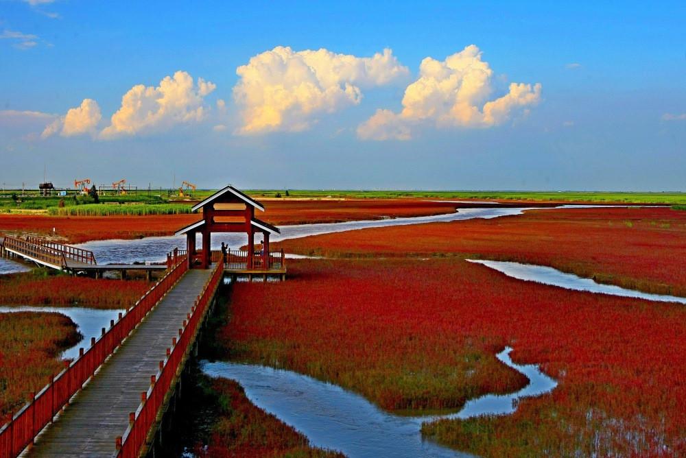 plage rouge panjin
