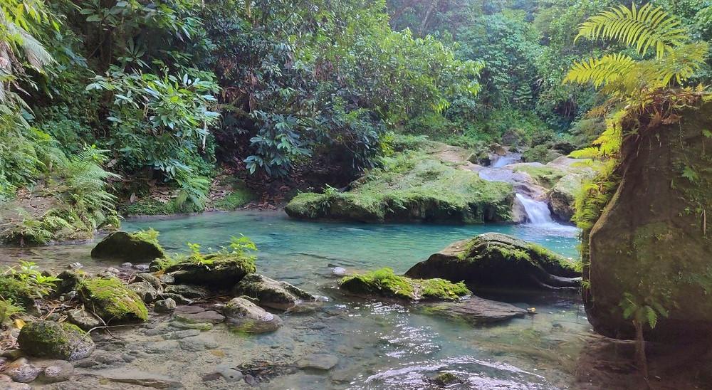 paysage Port Antonio Jamaïque