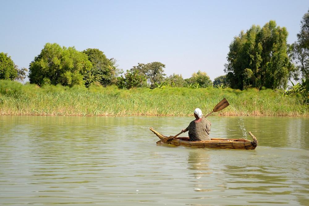 pirogue papyrus lac tana