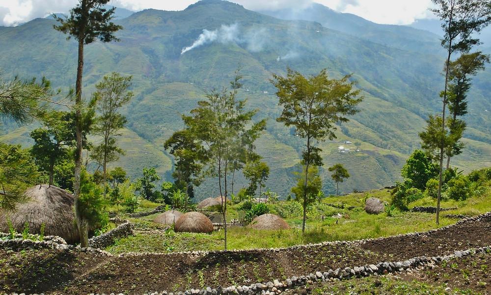 villages papouasie baliem