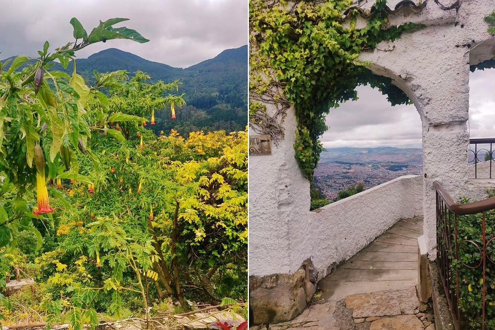 Verdure Monserrate Bogota