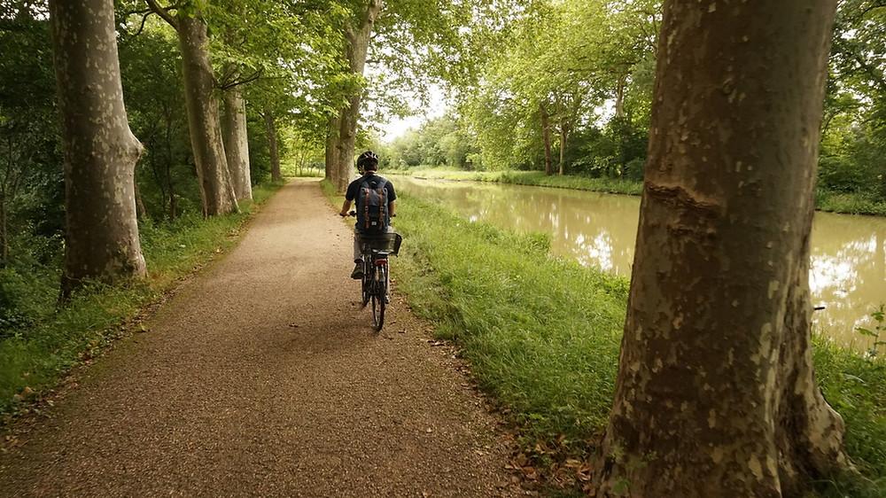 Gardouch Canal du Midi à vélo