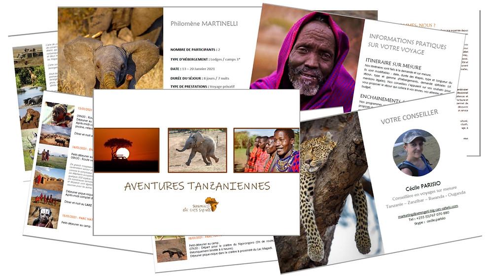 Serengeti big cats avis agence safari