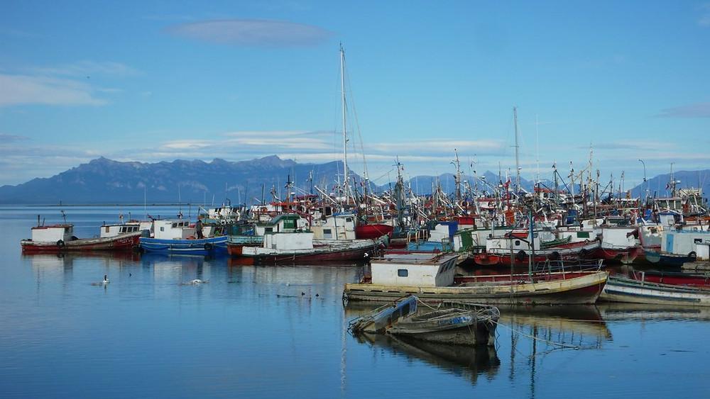 Puerto Natales port bateaux