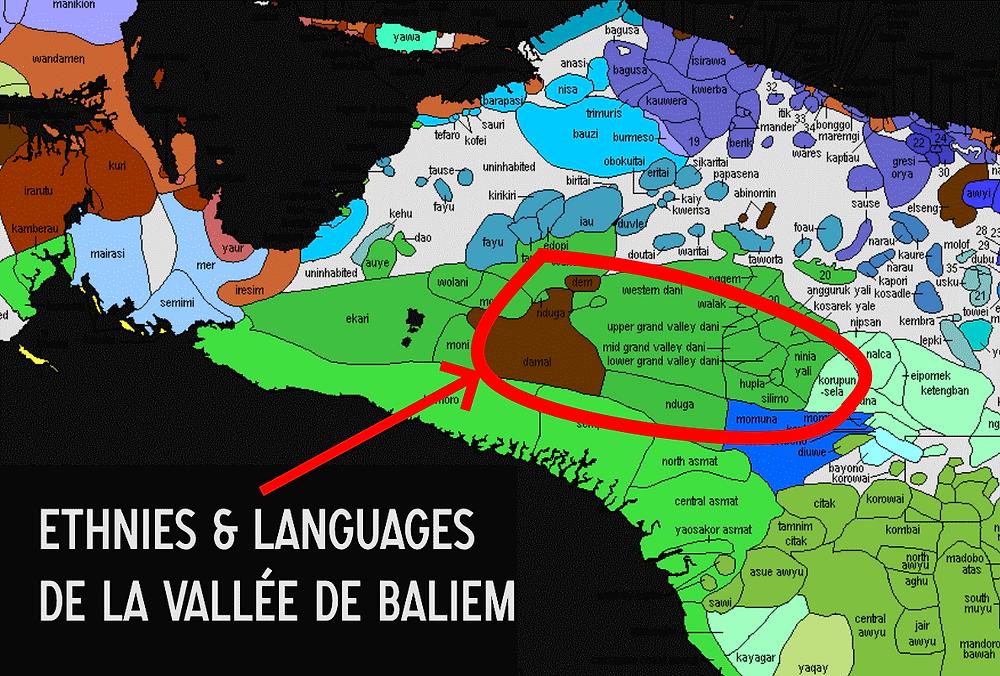 ethnies vallée de Baliem