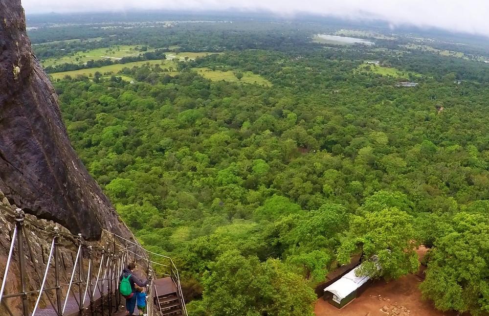 Canopée Sigîriya au Sri Lanka