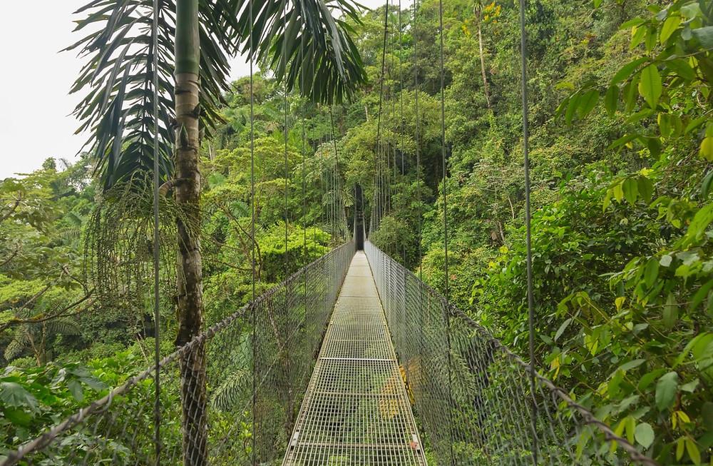 ponts suspendus Monte Verde costa rica