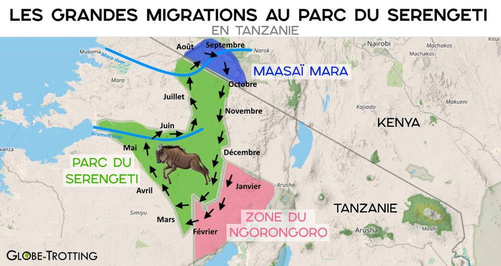 Carte migrations serengeti tanzanie