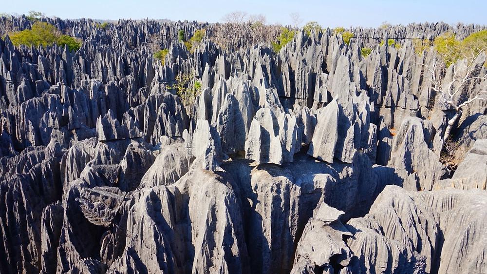 Tsingy Forêt de pierre