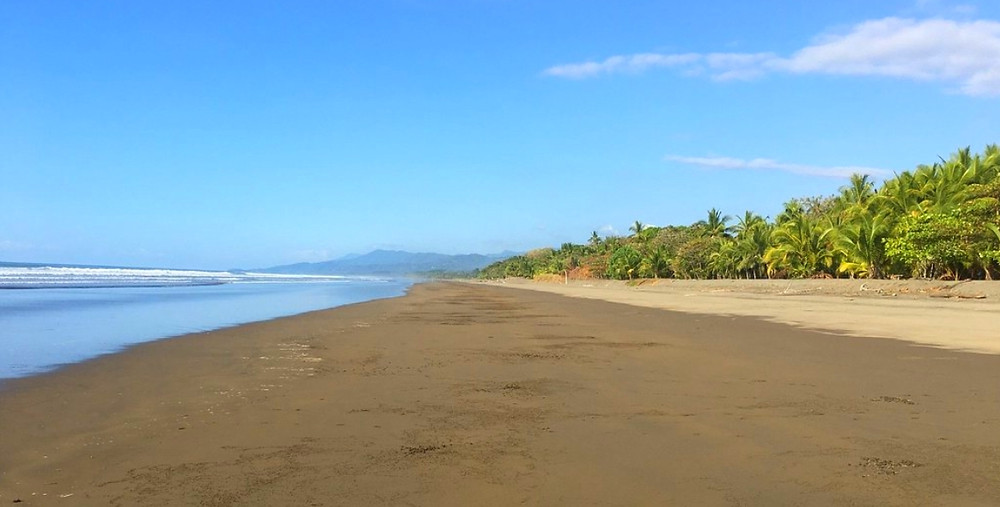 Costa Rica playa matapalo Portalon