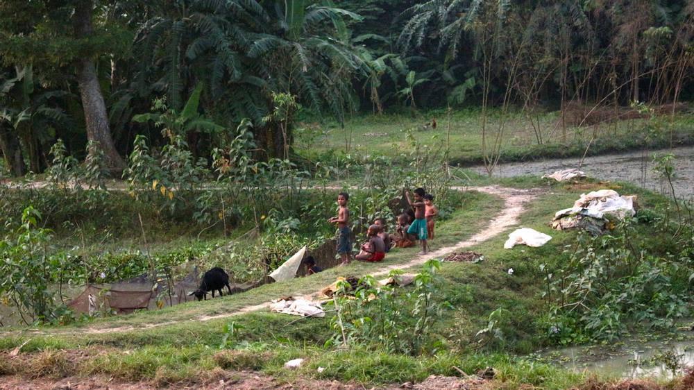 vue depuis le Train Bangladesh Dhaka Srimangal