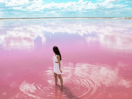 Le lagon rose du Yucatán au Mexique