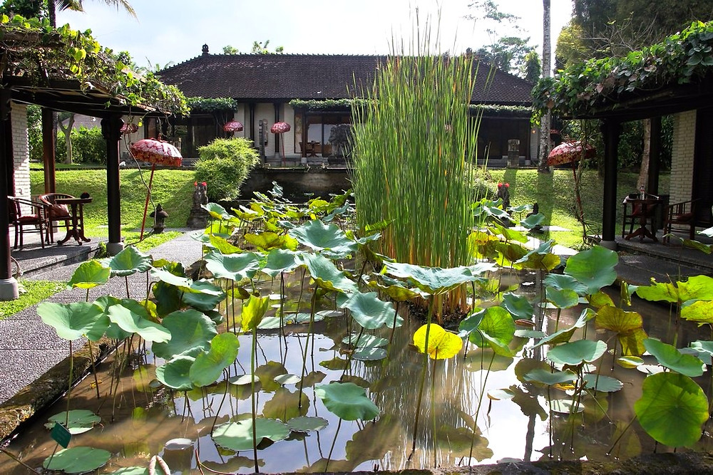 bassins villa chedi club ubud