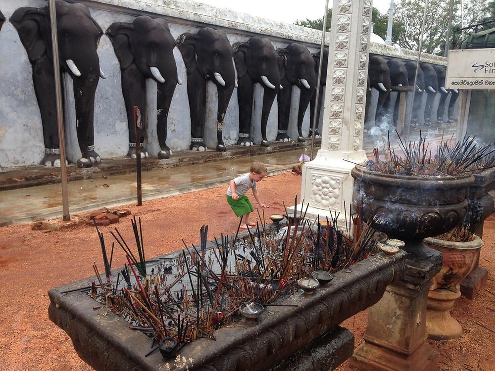 Anuradhapura encens éléphants