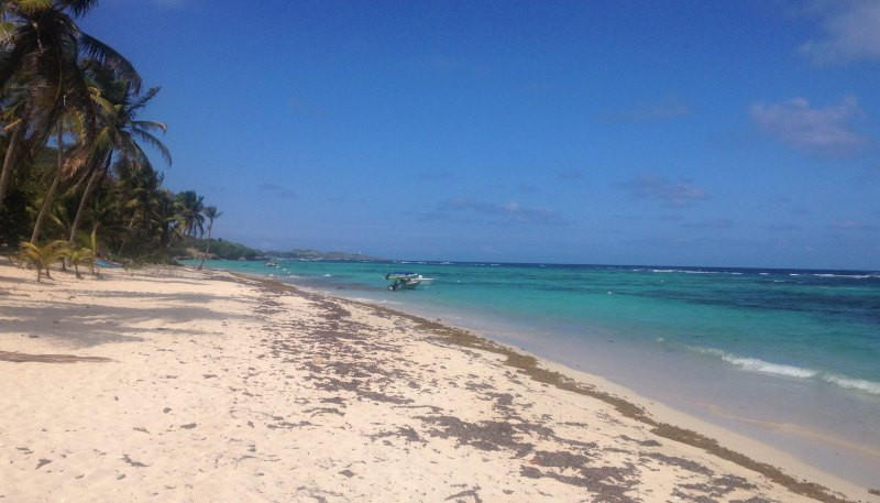 la désirade plage souffleur guadeloupe