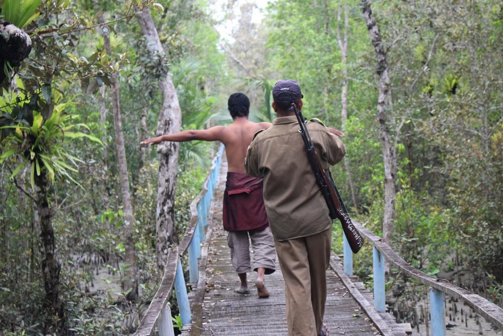 safari Sundarbans voyage Bangladesh
