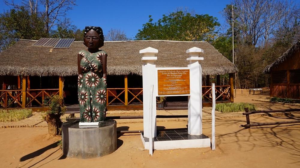 Forêt Kirindy Madagascar