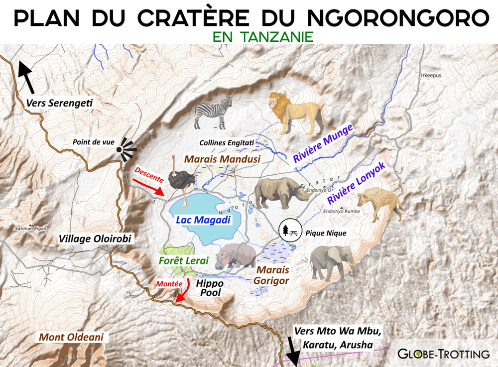 plan du cratère Ngorongoro