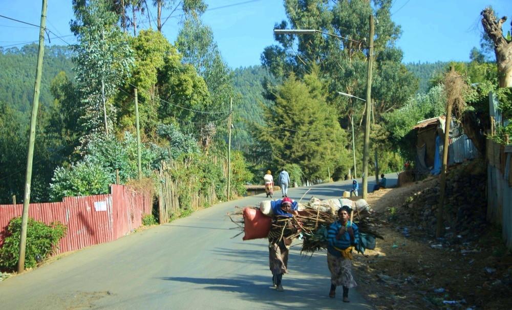 Addis Abeba Entoto femmes bois